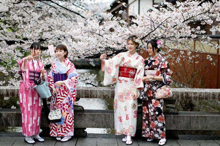 پارک ملی فوجی-هکنونه (شکوفه های گیلاس)